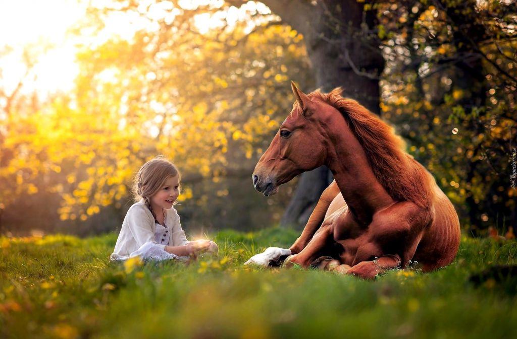 За конете и децата - Изображение 1