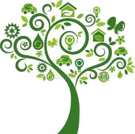 Как старата хартия спасява дървета? - Начален учител Милена Борисова - Плевен