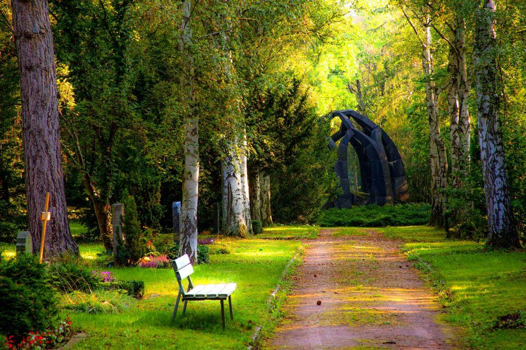 Да си припомним наученото по човекът и природата - Начален учител Милена Борисова - Плевен